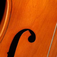String Chamber Showcase