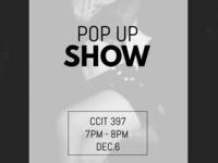 Paparazzi Perfect Models: Pop-Up Show