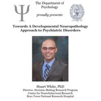 Psychology Job Talk: Towards A Developmental Neuropathology Approach to Psychiatric Disorders