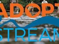 South Carolina Adopt-a-Stream Chemical & Bacterial Workshop