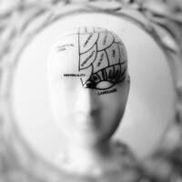 New Spring 2019 Course: Health Psychology