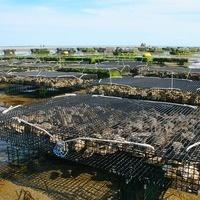 Aquaculture Meeting