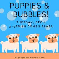 Puppies & Bubbles