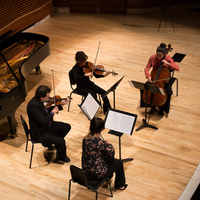 Chamber Music Showcase