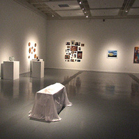 Bachelor of Fine Arts Exhibition