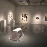 Bachelor of Fine Arts Exhibition
