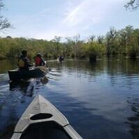 Merchants Millpond Canoe Day Trip