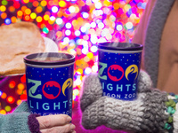 ZooLights Value Nights
