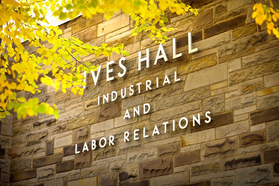 Joint Labor Economics and Strategy & Business Economics Workshop: Danielle Li