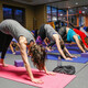 YogaFit for Personal Trainers