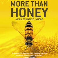 """Sustainability Film & Discussion Series: """"More Than Honey"""""""