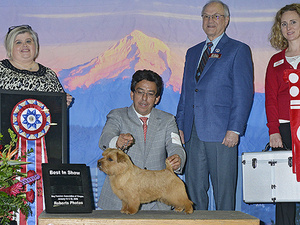 Rose City Classic: The Biggest Dog Show Series in the West