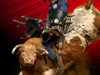 Professional Bull Riders: Velocity Tour
