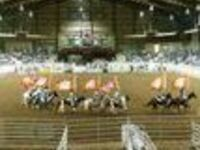Easy Bend IPRA Rodeo