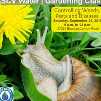 SCV Water Gardening Class: Controlling Weeds, Pests and Diseases