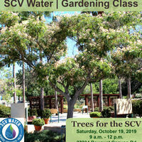 SCV Water Gardening Class: Trees for the SCV