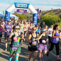 Sugar Daddy 5K, 10K, & Half Marathon