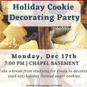 Holiday Cookie Decorating Party