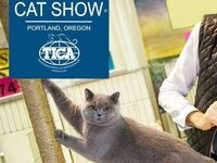 International Cat Show Portland