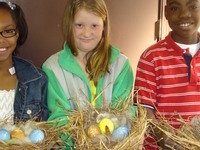 Budding Artists: Botanical Nests and Eggs