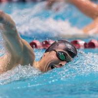 PLU Men's Swimming