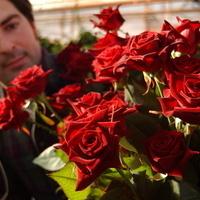 Pruning Roses at Willamalane