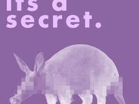 Secret Aardvark Comedy Show