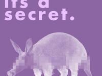 Secret Aardvark Comedy Show