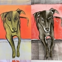 Pet Portraits Through Screen Monoprint