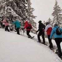 Vista Butte Day Trip & Snow Shelter Building
