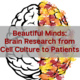 Beautiful Minds: Brain Research from Cell Culture to Patients