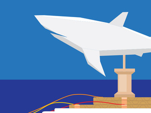 STEM Saturday – How Do Sharks Swim?