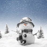 Winter Wonderland Vendor Show