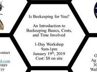 Is Beekeeping for You?