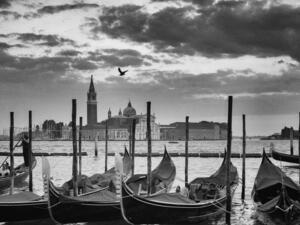 Mary Buck's  Venice Photography Exhibit