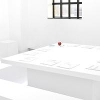 Talk by Apolonija Šušteršič with November Paynter, Artistic Director MOCA