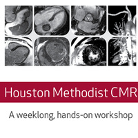 Houston Methodist Cardiovascular Magnetic Resonance Course - A Weeklong Hands-on Workshop