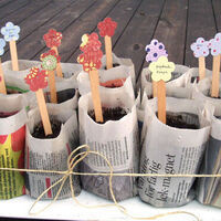STEM @ Your Library: Paper Pots & Spring Planting