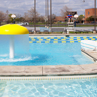 Adult Swim Lessons