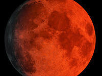 Super Wolf Blood Moon - Eclipse, Screening and Exhibit