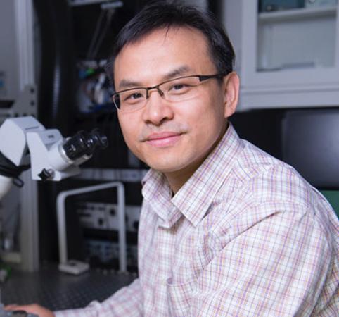 BME 7900 Seminar Series - Qi Wang, PhD