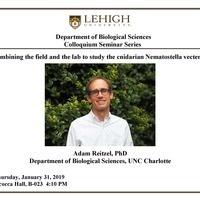 Colloquium Seminar Series, Dr. Adam Reitzel, UNC Charlotte | Biological Sciences