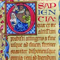 """""""Before Truth: Lonergan, Aquinas, and the Problem of Wisdom"""""""