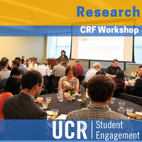 Chancellor's Research Fellowship Workshop - Undergraduate Research