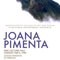 Film/Video presents: JOANA PIMENTA