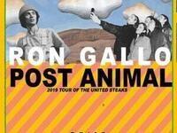 Ron Gallo / Post Animal