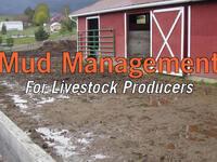 Mud Management for Livestock Producers