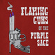 Auditions: Flaming Guns of the Purple Sage
