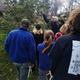 Spring Tree Identification Walk