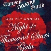 Night of a Thousand Stars Gala